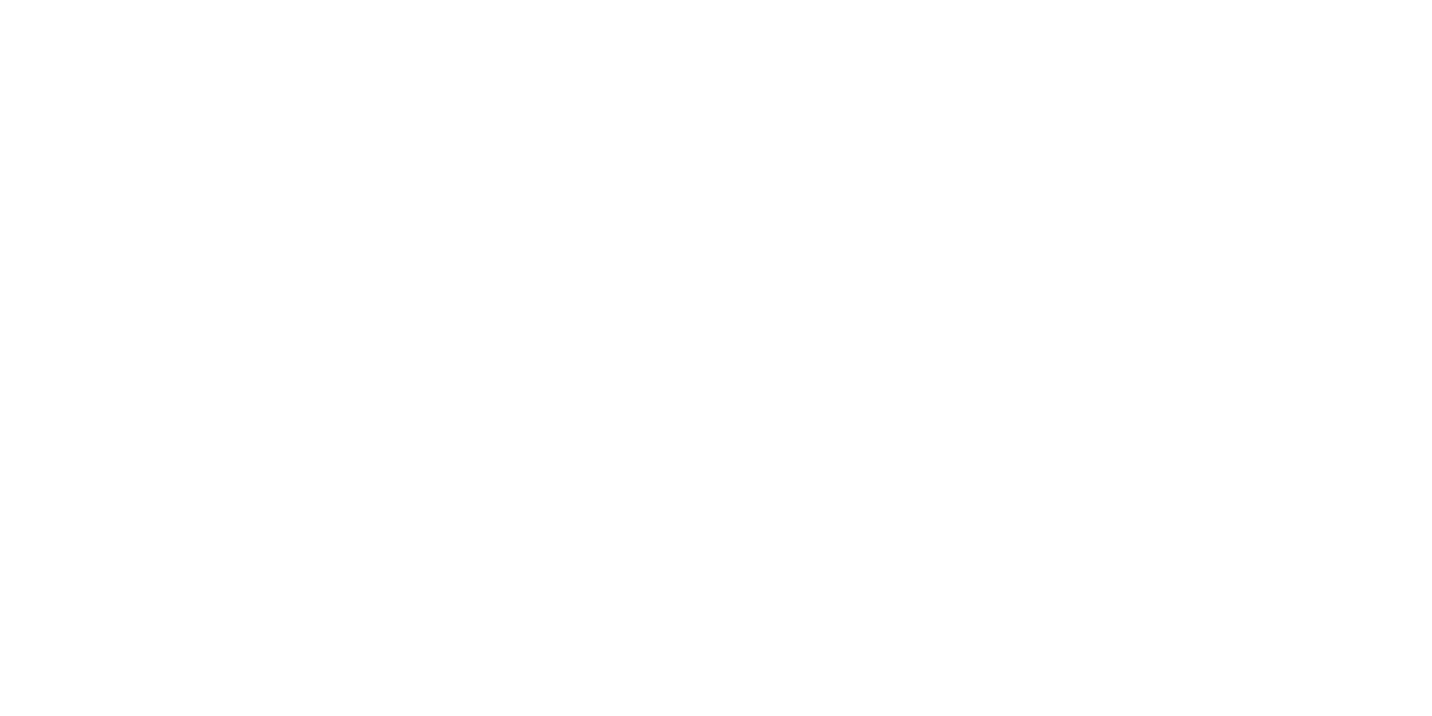 Crafting Outstanding Experiences White Logo